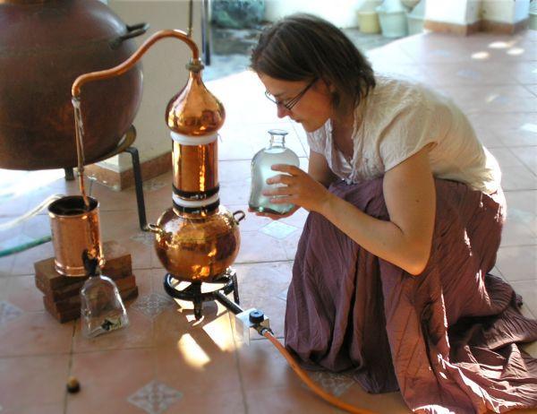 Ätherische Öle kann man ohne weiteres selber destillieren. Hier ist Katja gerade dabei