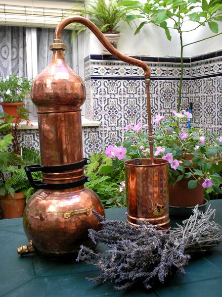 Ätherische Öle Destillieren mit der Kolonnenbrennerei von Destillatio (CopperGarden)