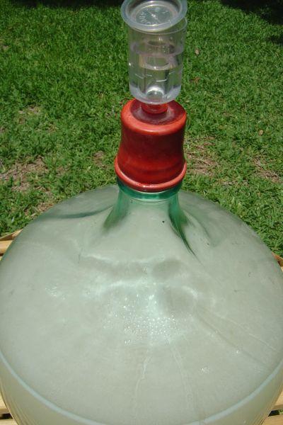 Fermentación de macerado de agua y azúcar con levadura turbo en nuestro jardín