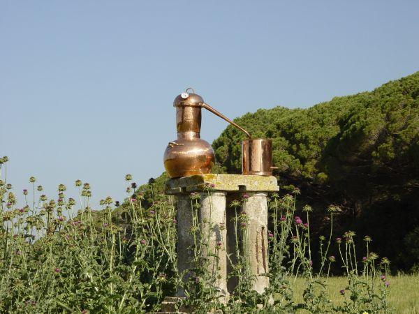 Destillieren in freier Natur