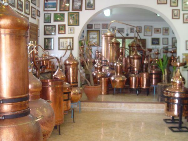 Möchten Sie eine Destille bei Destillatio kaufen? Hier sehen Sie unseren Destillen Shop